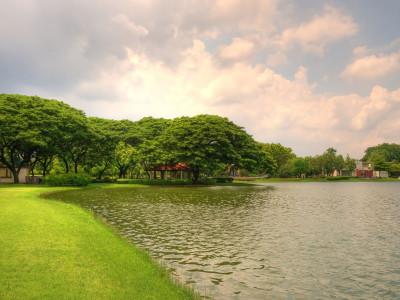 Disc Golf Course Design